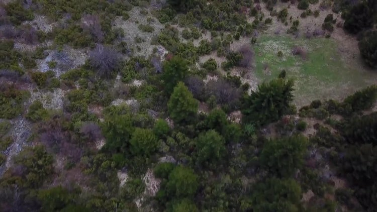 Beautiful Nature Aerial: Stock Video