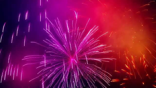 Colorful Fireworks : Stock Motion Graphics