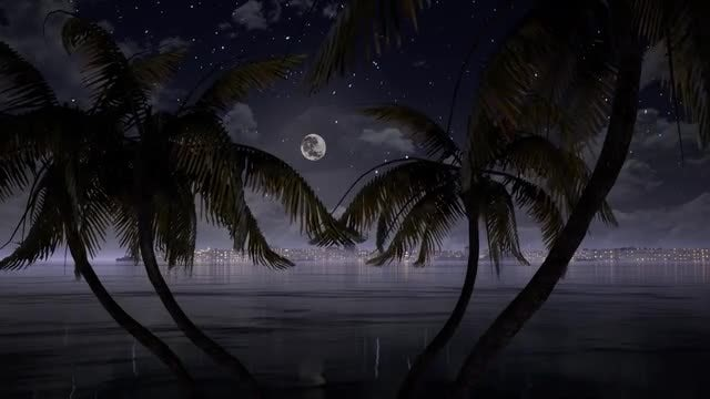Moon Between The Palms: Stock Motion Graphics