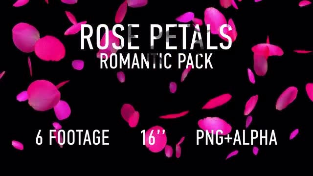 Rose Petals Pack: Stock Motion Graphics