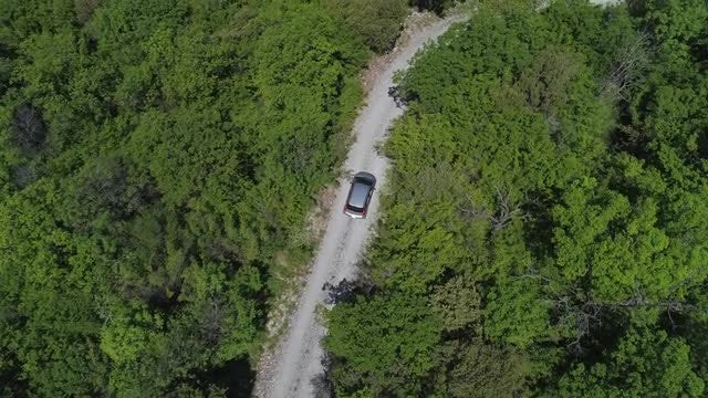 Car On Gravel Forest Road: Stock Video