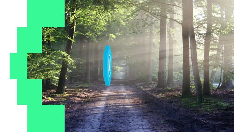 Transition Logo Animation: After Effects Templates