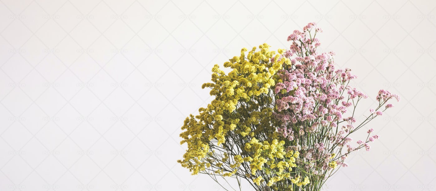 Colorful Dried Flowers: Stock Photos
