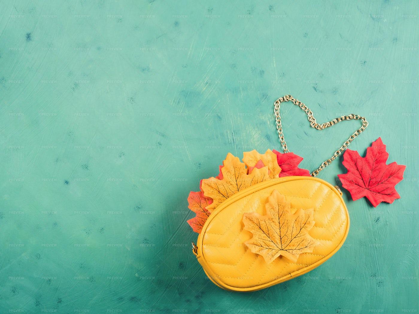 Autumn Handbag On Green: Stock Photos