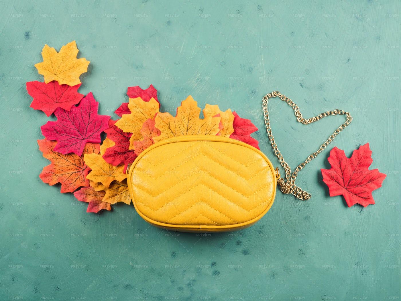 Handbag With Autumn Leaves: Stock Photos