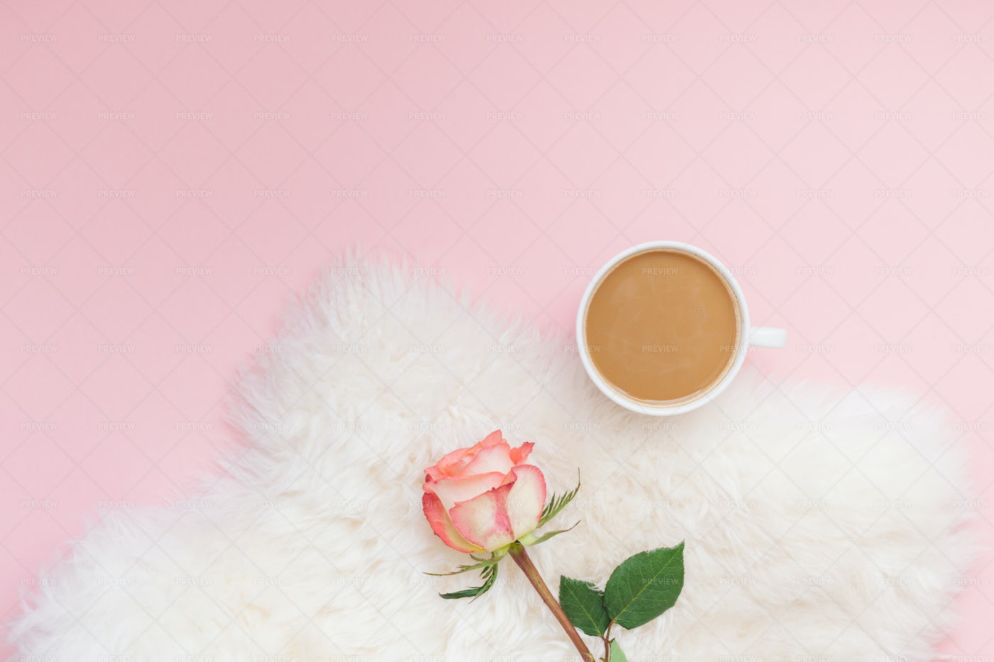 Coffee And Rose Flower: Stock Photos