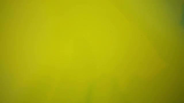 Blending Paint: Stock Video