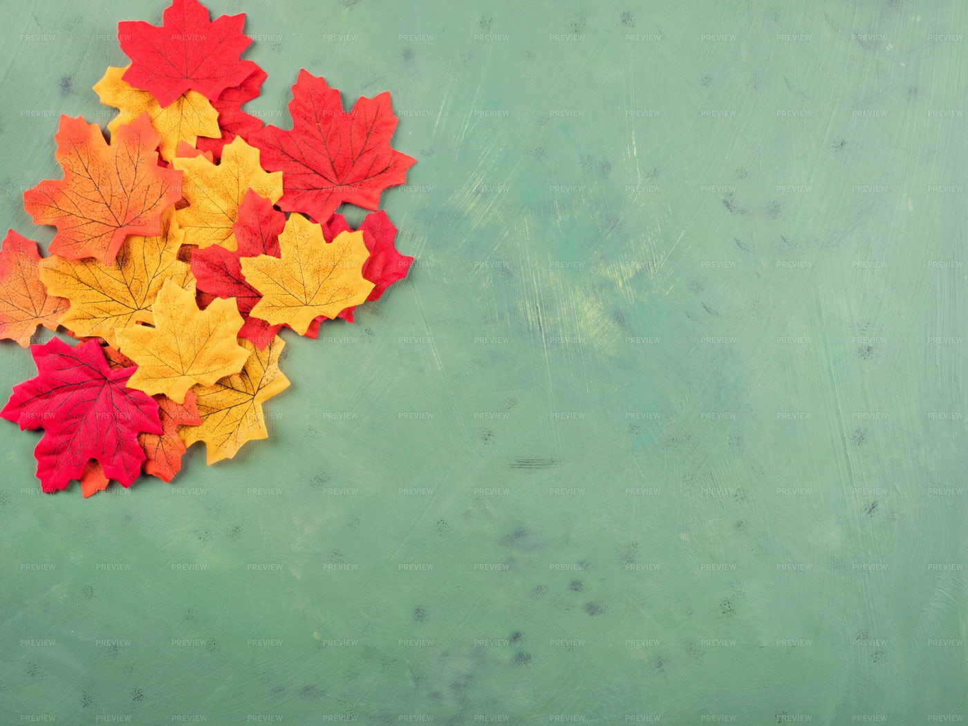 Maple Leaves On Green: Stock Photos
