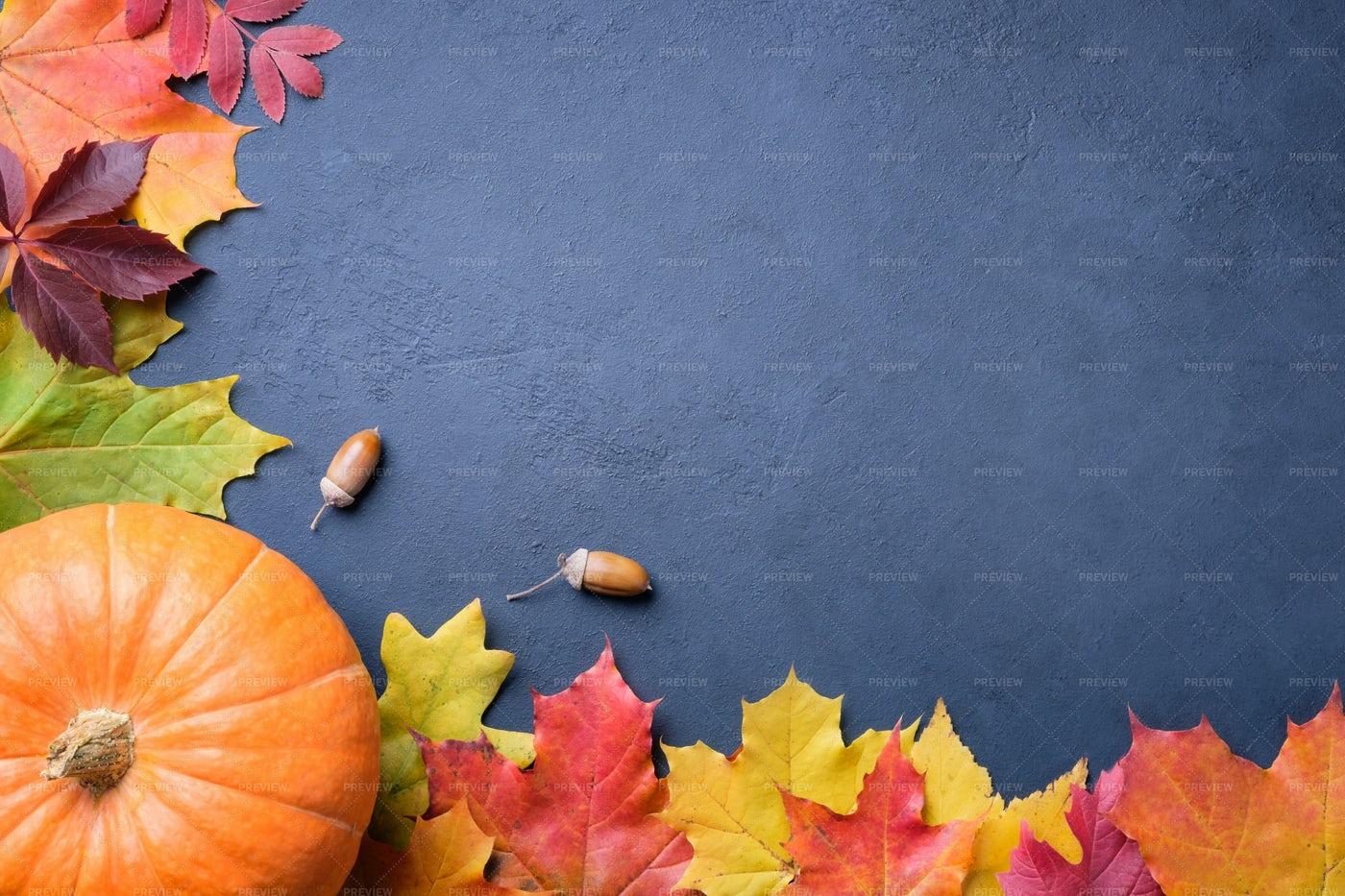 Autumn Still Life: Stock Photos