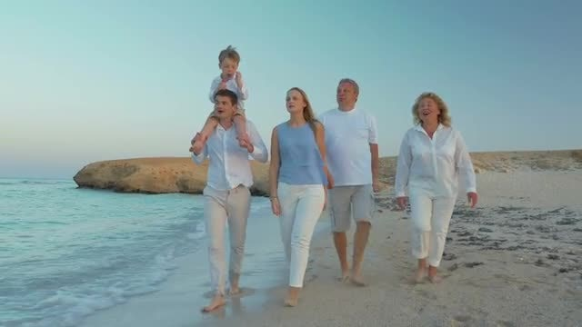 Family Walking By The Sea: Stock Video