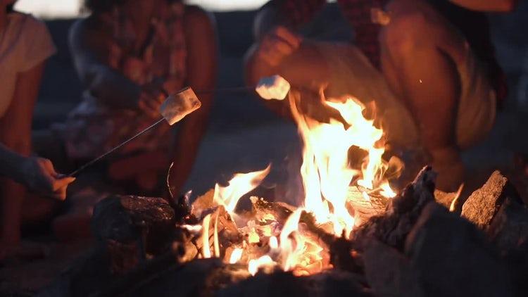 Roasting Marshmallows : Stock Video