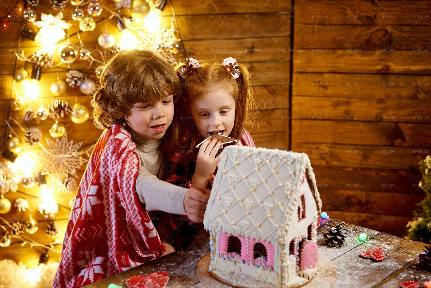 Kids With Gingerbread House: Stock Photos