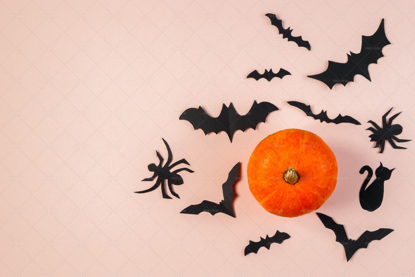 Bats And Pumpkin: Stock Photos