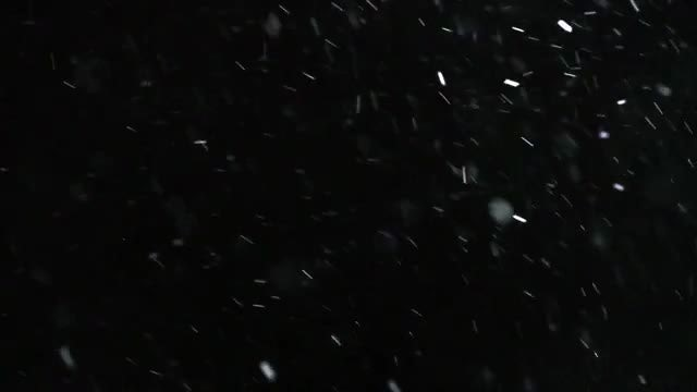 Winter Snowfall Slow Motion: Stock Video