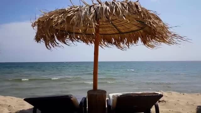 Natural Beach Umbrella On Shore: Stock Video