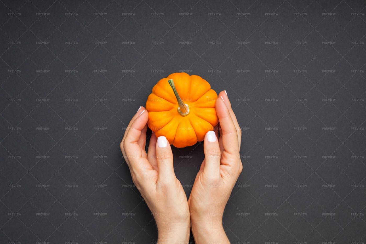 Hands With Orange Pumpkin: Stock Photos