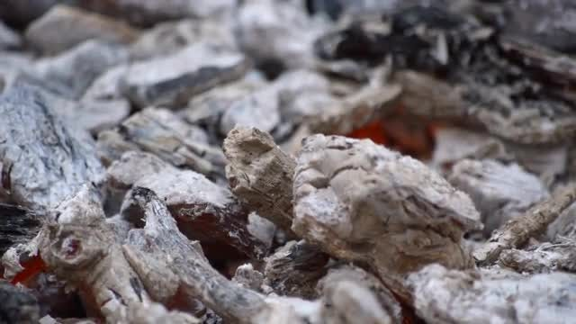 Ashes Over Embers On Ground : Stock Video