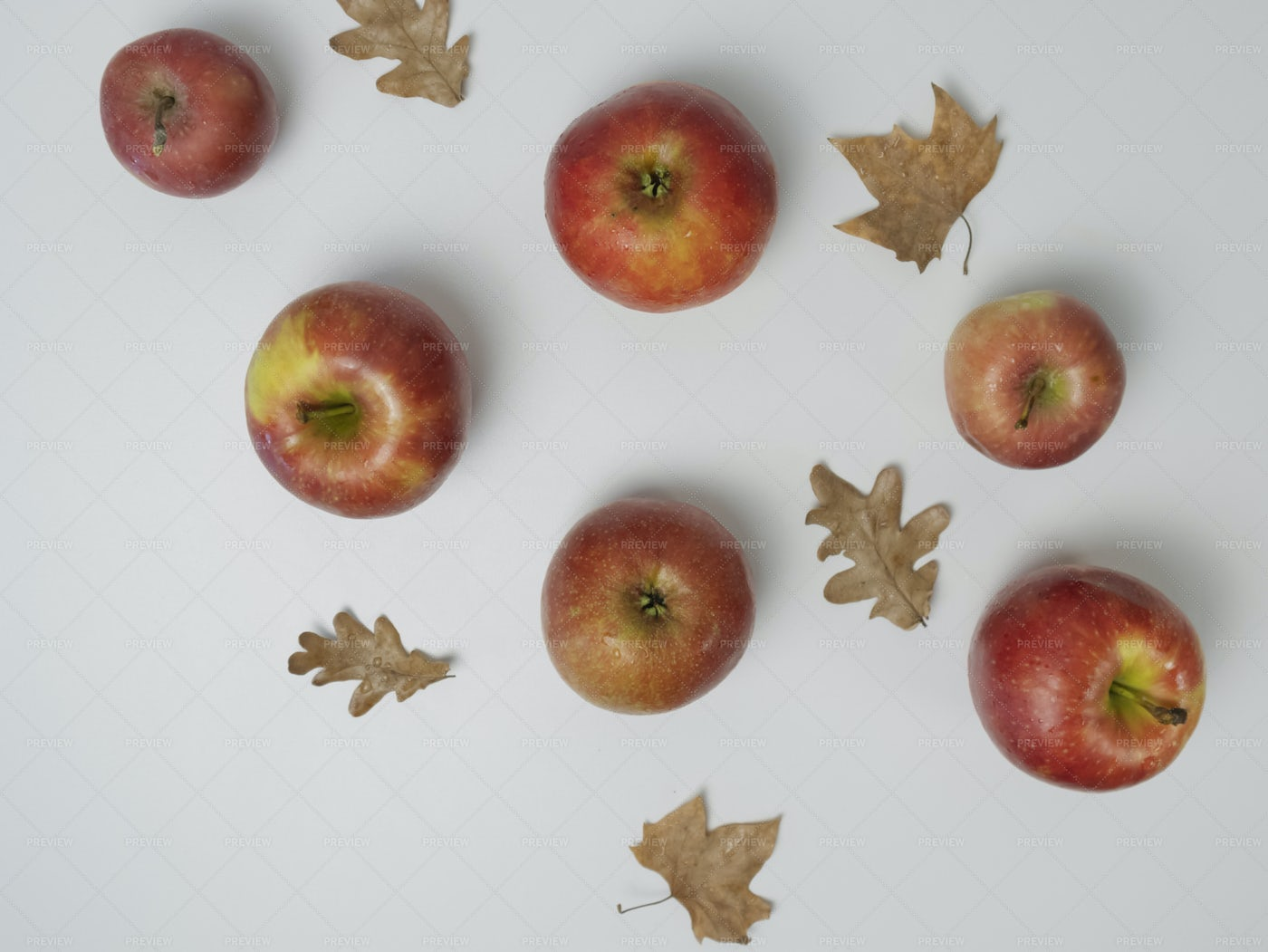 Apples With Autumn Leaves: Stock Photos