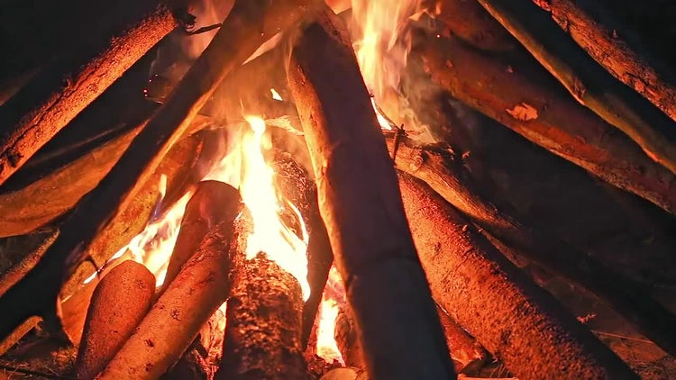 Big Campfire At Night: Stock Video