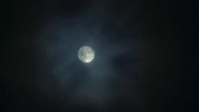 Full Moon At Night : Stock Video