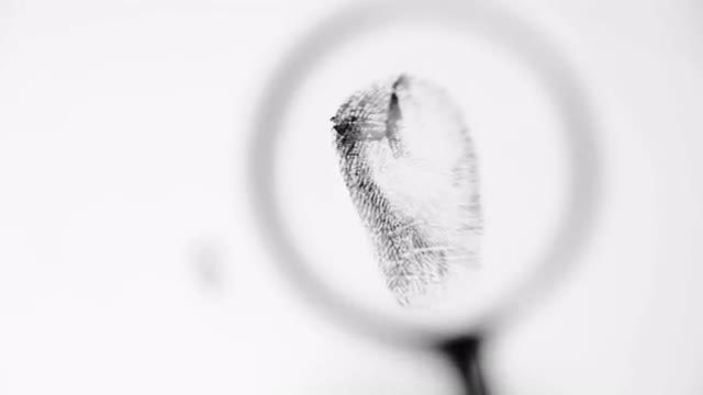 Analysis Of Fingerprints With Magnifier : Stock Video