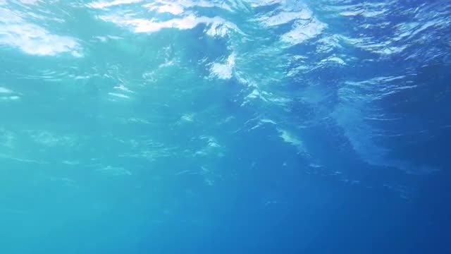 Close Up Of Turbulent Sea: Stock Video