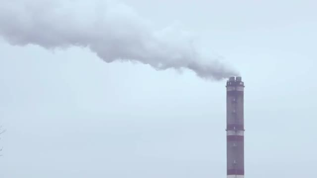 Thick Gray Smoke From Chimney: Stock Video