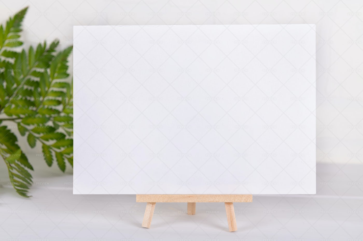 Empty Card With Fern Plant: Stock Photos