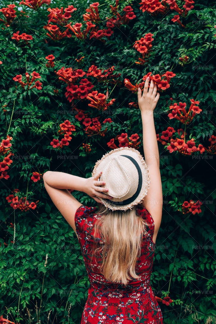 Reaching For The Flowers: Stock Photos