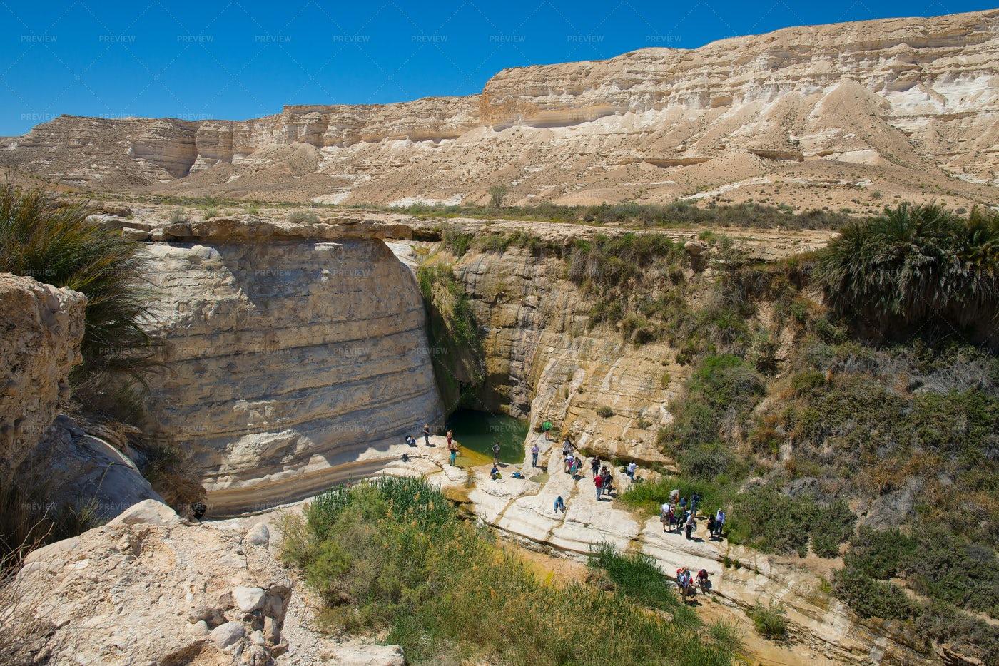 Negev Desert: Stock Photos