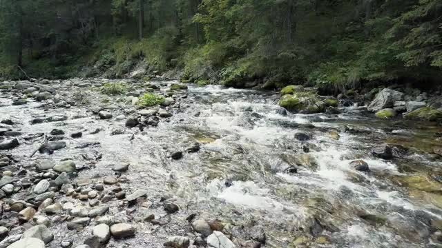 A River Flows Over Rocks: Stock Video