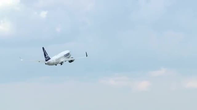 Passenger Airplane Takeoff, Back View: Stock Video