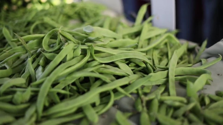 Close-up Shot Of Green Beans: Stock Video