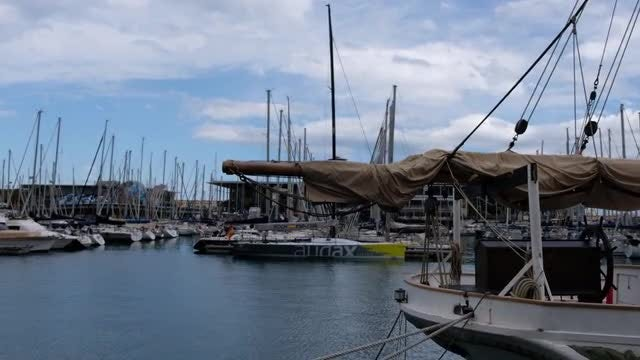 Yachts In A Calm Dock: Stock Video
