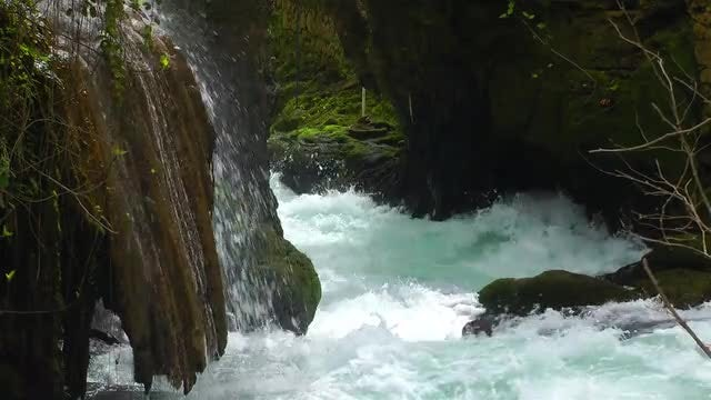 Beautiful Waterfall In Green Nature: Stock Video