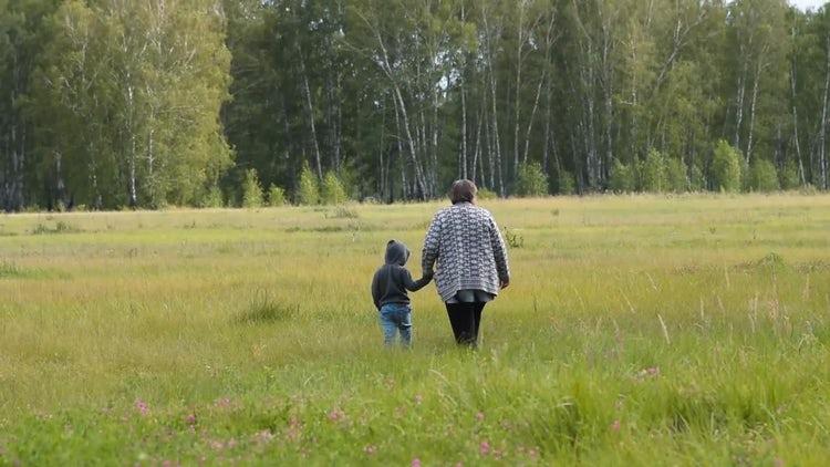 Grandma And Grandson In Woods: Stock Video