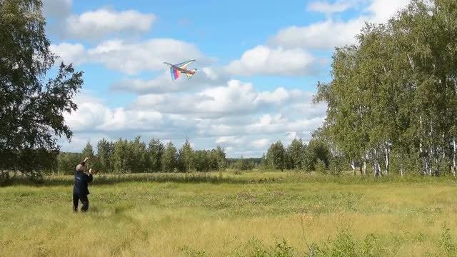 Senior Man Flying A Kite: Stock Video