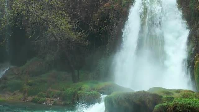 Beautiful Waterfall In The Jungle: Stock Video