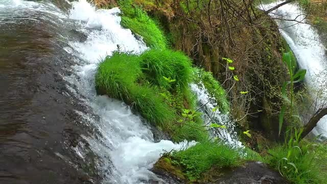 Beautiful Waterfall And Green Grass: Stock Video