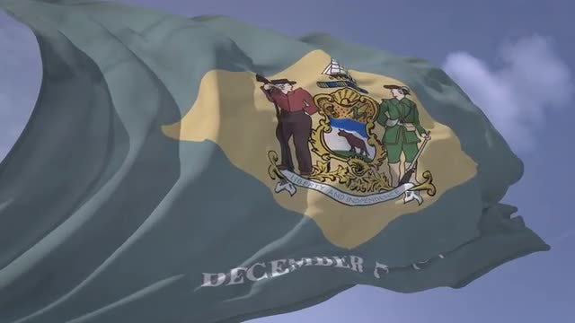 Delaware Flag: Stock Motion Graphics