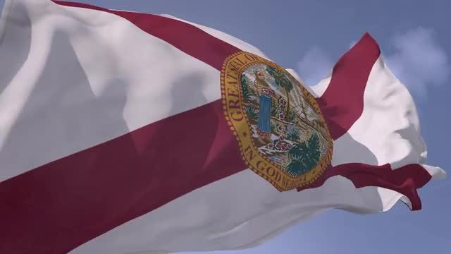 Florida Flag: Stock Motion Graphics