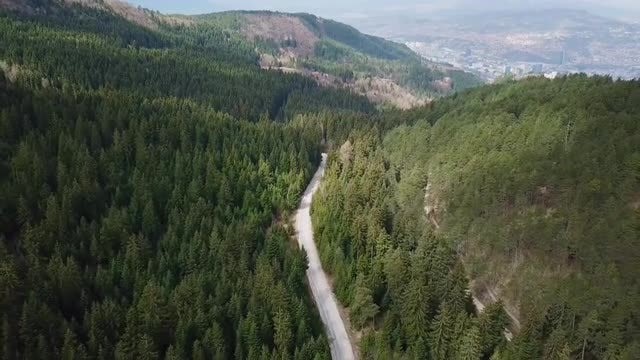 Highway In Forest Aerial View: Stock Video
