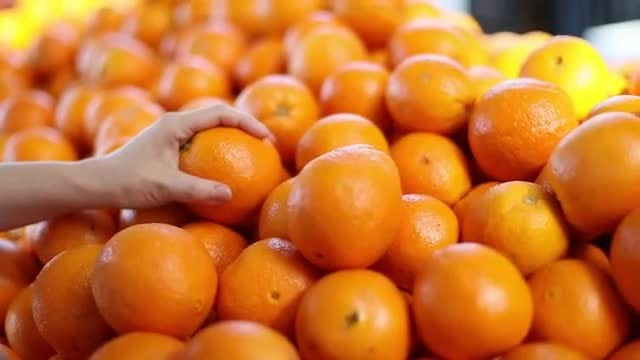 Woman Picking Out Oranges : Stock Video