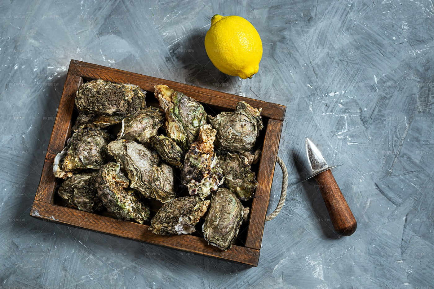 Oysters In A Wooden Box: Stock Photos