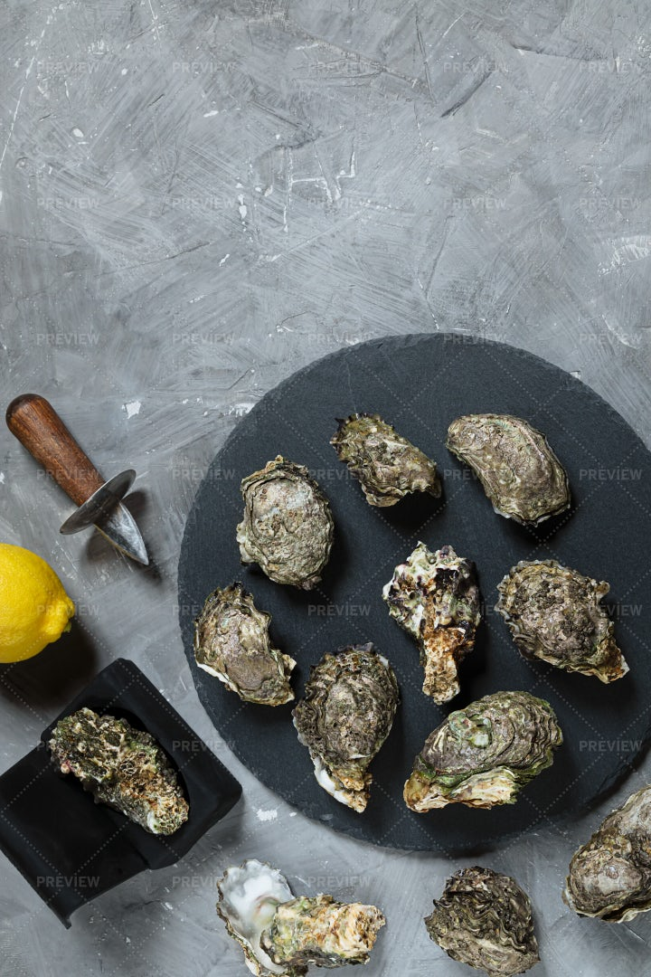 Oysters On Round Slate Board: Stock Photos