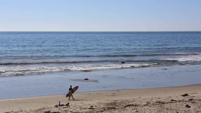 Male Surfer Walking On Beach: Stock Video