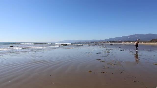 Female Surfer Walking On Beach: Stock Video