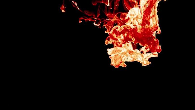 Orange Ink Spreading Like Fire : Stock Video