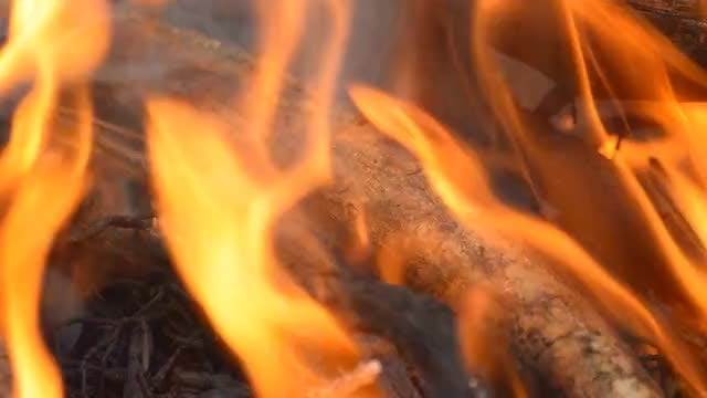 Heap Of Firewood Burning Intensely : Stock Video