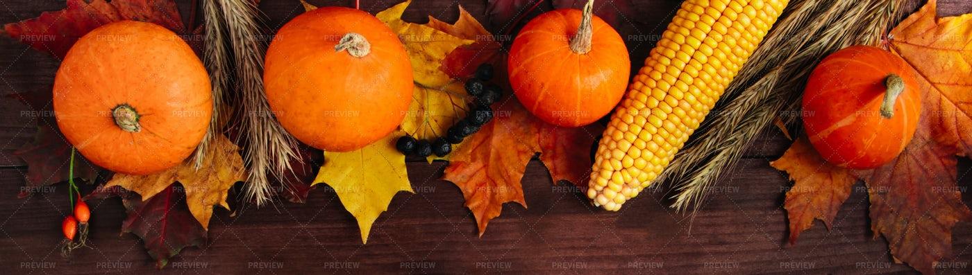 Autumn Harvest Banner Background: Stock Photos